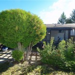 foreclosure red deer